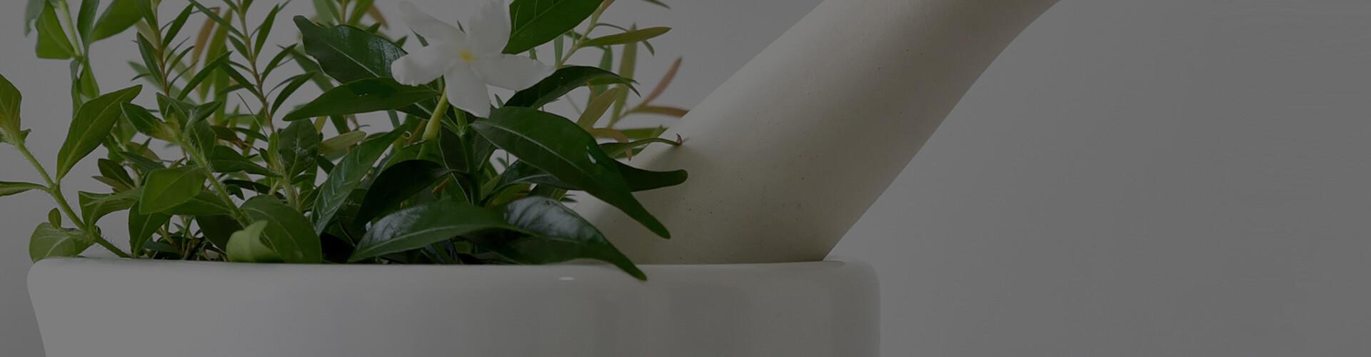 Grafika strony Składniki roślinne